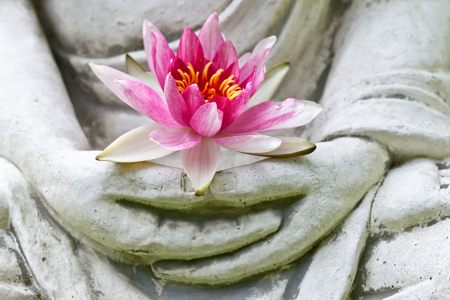 Buddha hands holding flower